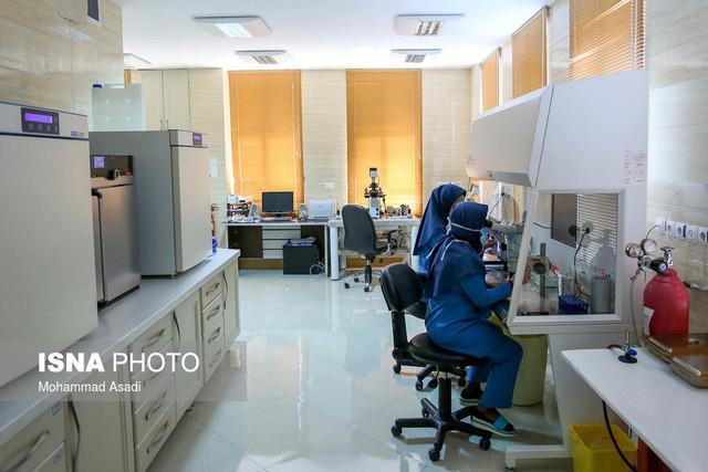 فعالیت درحوزه پزشکی بدون پیوست های پژوهشی مزیتی ندارد