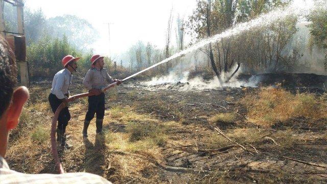 آتش سوزی در جنگل های نوروزلو میاندوآب +تصاویر