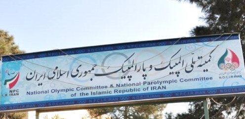 اعضای کمیسیون های کمیته ملی المپیک افتخاری و مشورتی عمل می نمایند