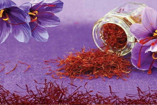 خرید توافقی 300 تن گل زعفران درخراسان رضوی