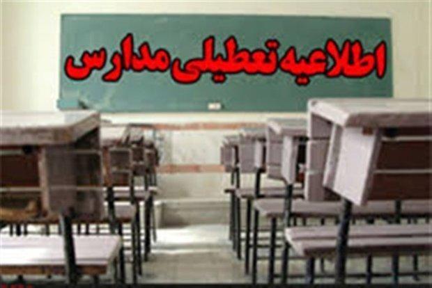 مدارس ابتدایی و پیش دبستانی بوشهر و دیلم در نوبت صبح تعطیل شد