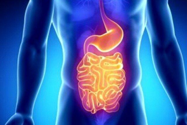 ارائه جدیدترین دستاوردهای علمی بیماری های التهابی روده در رشت