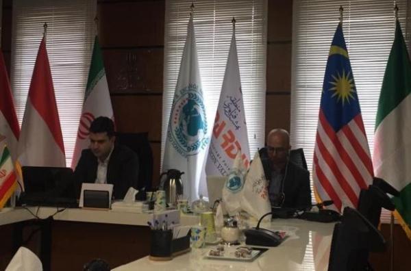 توانمندی ها و نیازهای کشورهای عضو D8 در بخش فناوری ارائه می گردد