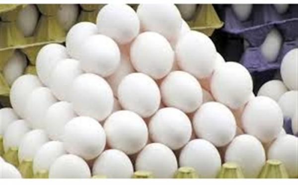 توقف الزام نگهداری و عرضه تخم مرغ بسته بندی در شرایط یخچالی