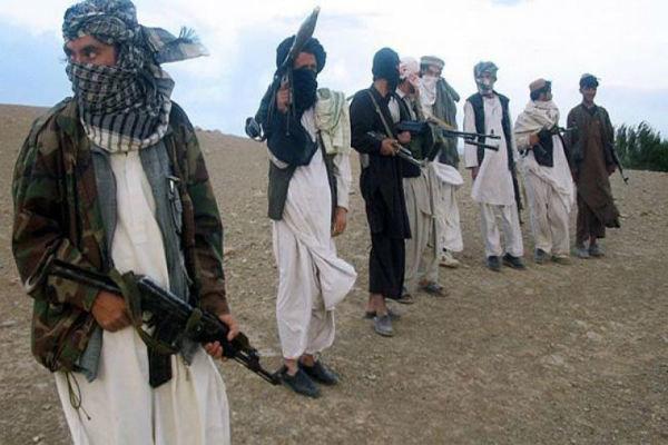 178 عضو طالبان در افغانستان کشته شدند
