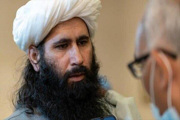 طالبان ارائه پیشنهاد صلح به دولت افغانستان را تکذیب کرد